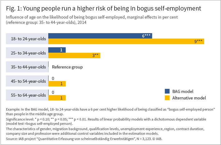 The Figure shows that young people run a higher risk of being in bogus self-employment